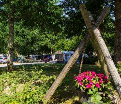 Emplacement tente ou caravane - Camping La Grande Tortue