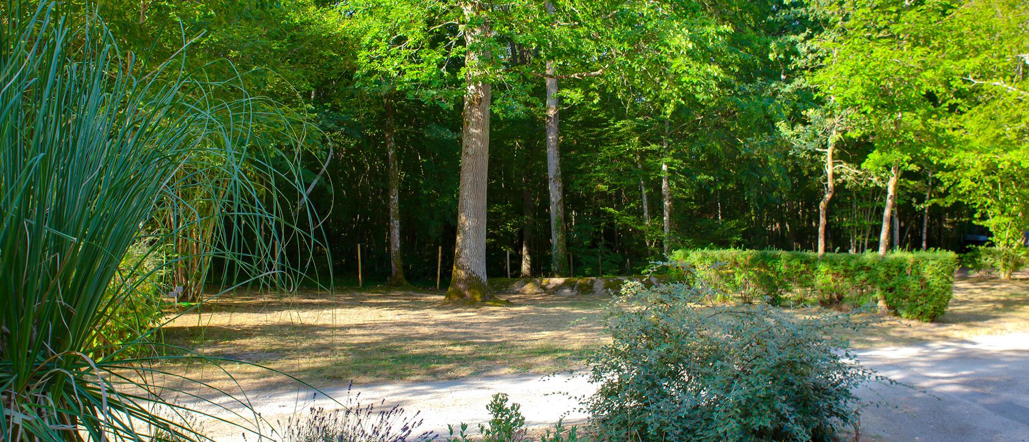 Emplacements tente - Camping La Grande Tortue